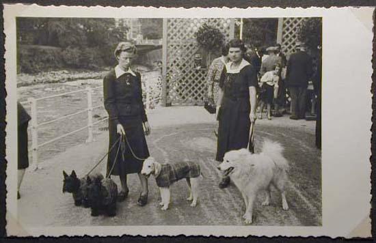 Mostra canina sotto il Fascismo-Hundeaustellung unter dem Faschismus 001 _10_.jpg