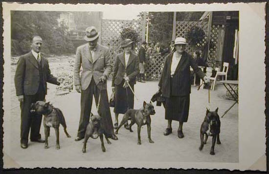 Mostra canina sotto il Fascismo-Hundeaustellung unter dem Faschismus 001 _13_.jpg