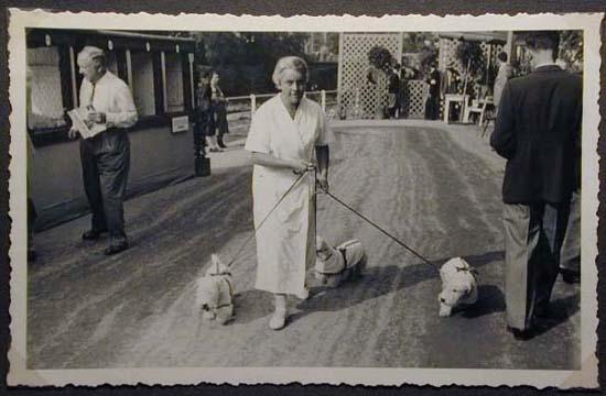 Mostra canina sotto il Fascismo-Hundeaustellung unter dem Faschismus 001 _14_.jpg
