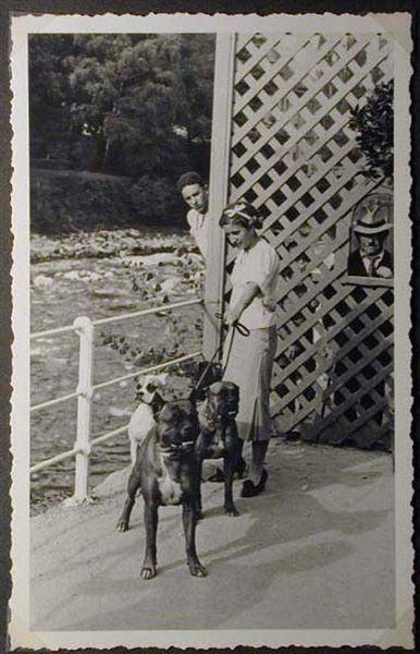 Mostra canina sotto il Fascismo-Hundeaustellung unter dem Faschismus 001 _22_.jpg