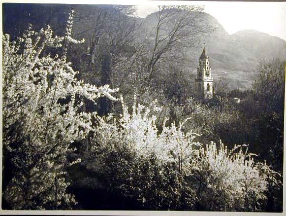 Bellissime immagini cartolina di Merano e dintorni- Viele wunderschoene Bilder von Meran und Umgebungen _10_.jpg