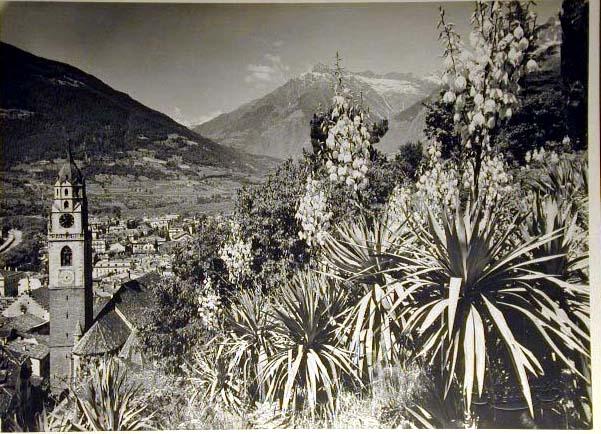Bellissime immagini cartolina di Merano e dintorni- Viele wunderschoene Bilder von Meran und Umgebungen _11_.jpg