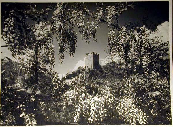 Bellissime immagini cartolina di Merano e dintorni- Viele wunderschoene Bilder von Meran und Umgebungen _14_.jpg