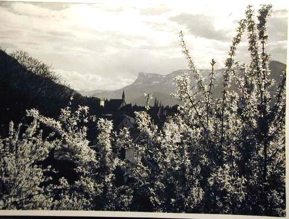 Bellissime immagini cartolina di Merano e dintorni- Viele wunderschoene Bilder von Meran und Umgebungen _17_.jpg