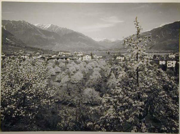 Bellissime immagini cartolina di Merano e dintorni- Viele wunderschoene Bilder von Meran und Umgebungen _30_.jpg