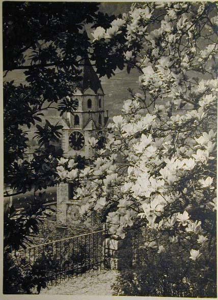 Bellissime immagini cartolina di Merano e dintorni- Viele wunderschoene Bilder von Meran und Umgebungen _31_.jpg
