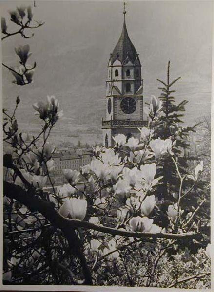 Bellissime immagini cartolina di Merano e dintorni- Viele wunderschoene Bilder von Meran und Umgebungen _33_.jpg