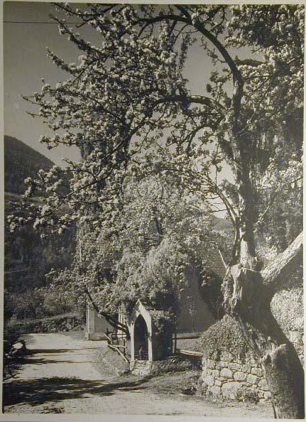 Bellissime immagini cartolina di Merano e dintorni- Viele wunderschoene Bilder von Meran und Umgebungen _40_.jpg