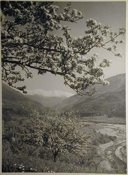 Bellissime immagini cartolina di Merano e dintorni- Viele wunderschoene Bilder von Meran und Umgebungen _41_.jpg
