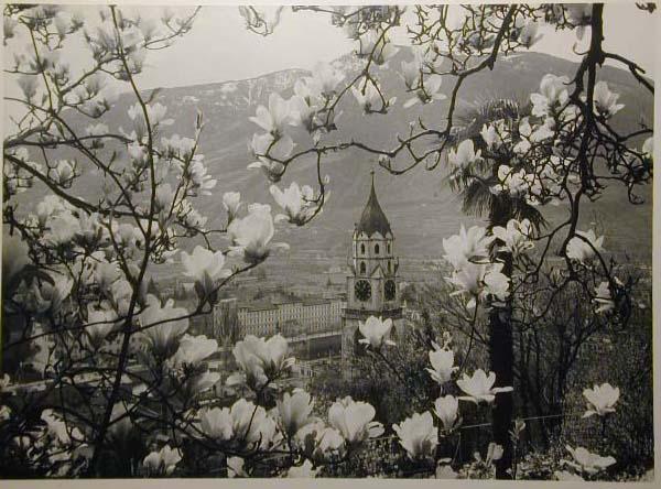 Bellissime immagini cartolina di Merano e dintorni- Viele wunderschoene Bilder von Meran und Umgebungen _46_.jpg