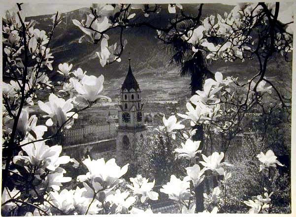 Bellissime immagini cartolina di Merano e dintorni- Viele wunderschoene Bilder von Meran und Umgebungen _47_.jpg