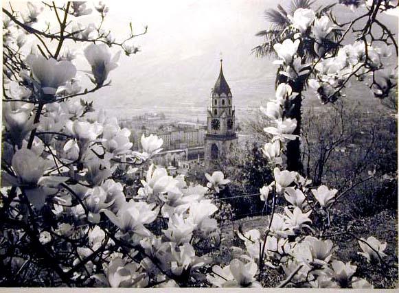 Bellissime immagini cartolina di Merano e dintorni- Viele wunderschoene Bilder von Meran und Umgebungen _48_.jpg
