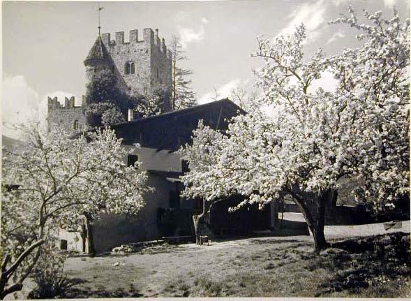 Bellissime immagini cartolina di Merano e dintorni- Viele wunderschoene Bilder von Meran und Umgebungen _65_.jpg
