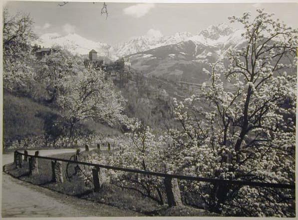 Bellissime immagini cartolina di Merano e dintorni- Viele wunderschoene Bilder von Meran und Umgebungen _70_.jpg