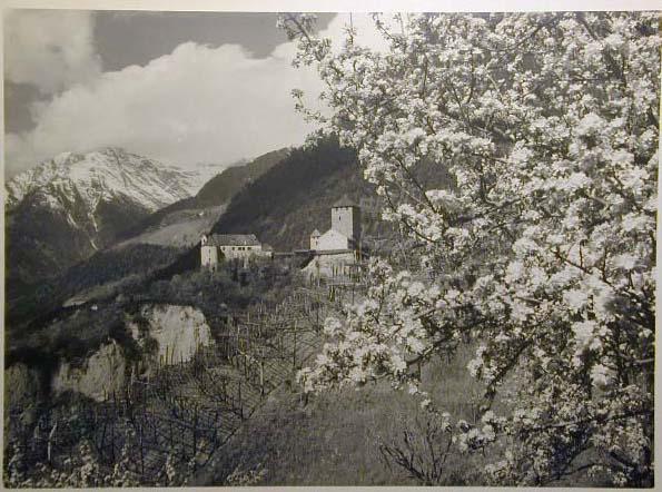 Bellissime immagini cartolina di Merano e dintorni- Viele wunderschoene Bilder von Meran und Umgebungen _71_.jpg