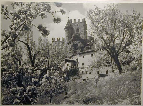 Bellissime immagini cartolina di Merano e dintorni- Viele wunderschoene Bilder von Meran und Umgebungen _74_.jpg