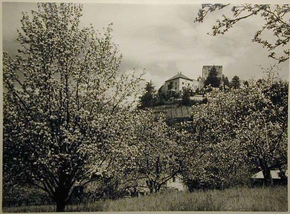 Bellissime immagini cartolina di Merano e dintorni- Viele wunderschoene Bilder von Meran und Umgebungen _79_.jpg