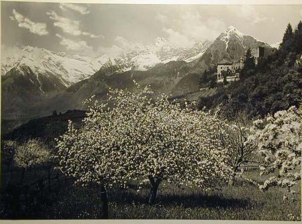 Bellissime immagini cartolina di Merano e dintorni- Viele wunderschoene Bilder von Meran und Umgebungen _81_.jpg