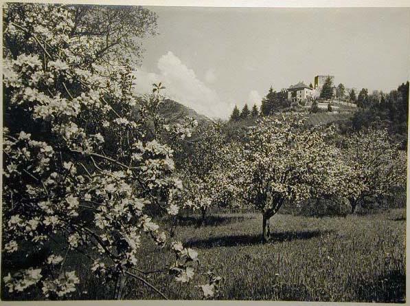 Bellissime immagini cartolina di Merano e dintorni- Viele wunderschoene Bilder von Meran und Umgebungen _82_.jpg