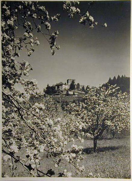 Bellissime immagini cartolina di Merano e dintorni- Viele wunderschoene Bilder von Meran und Umgebungen _83_.jpg