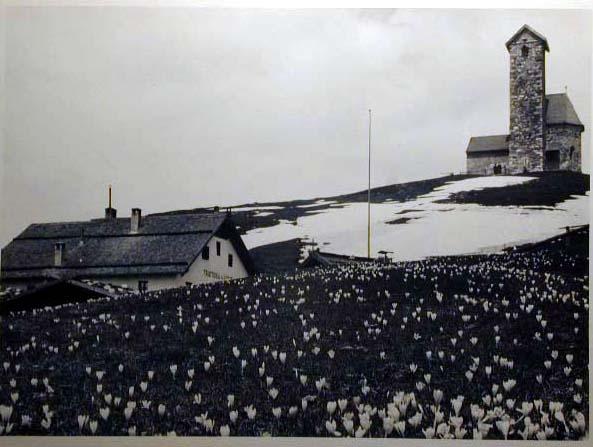 Bellissime immagini cartolina di Merano e dintorni- Viele wunderschoene Bilder von Meran und Umgebungen _92_.jpg