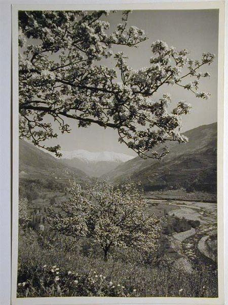 Meran-o-1940-50011.jpg