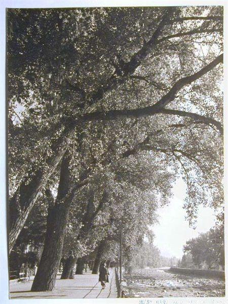 Meran-o-1940-50061.jpg