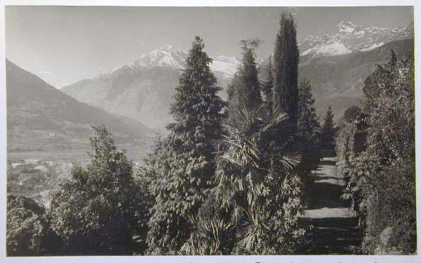 Meran-o-1940-50090.jpg