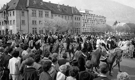 avelignesi-haflinger 1961002.jpg