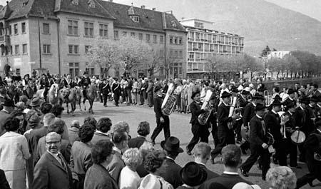 avelignesi-haflinger 1961006.jpg